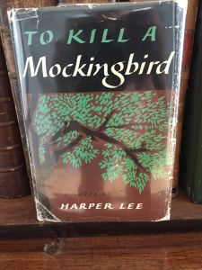 Appraisal of To Kill a Mockingbird by Harper Lee